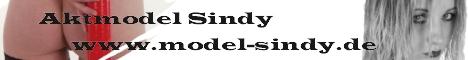 Model - Sindy